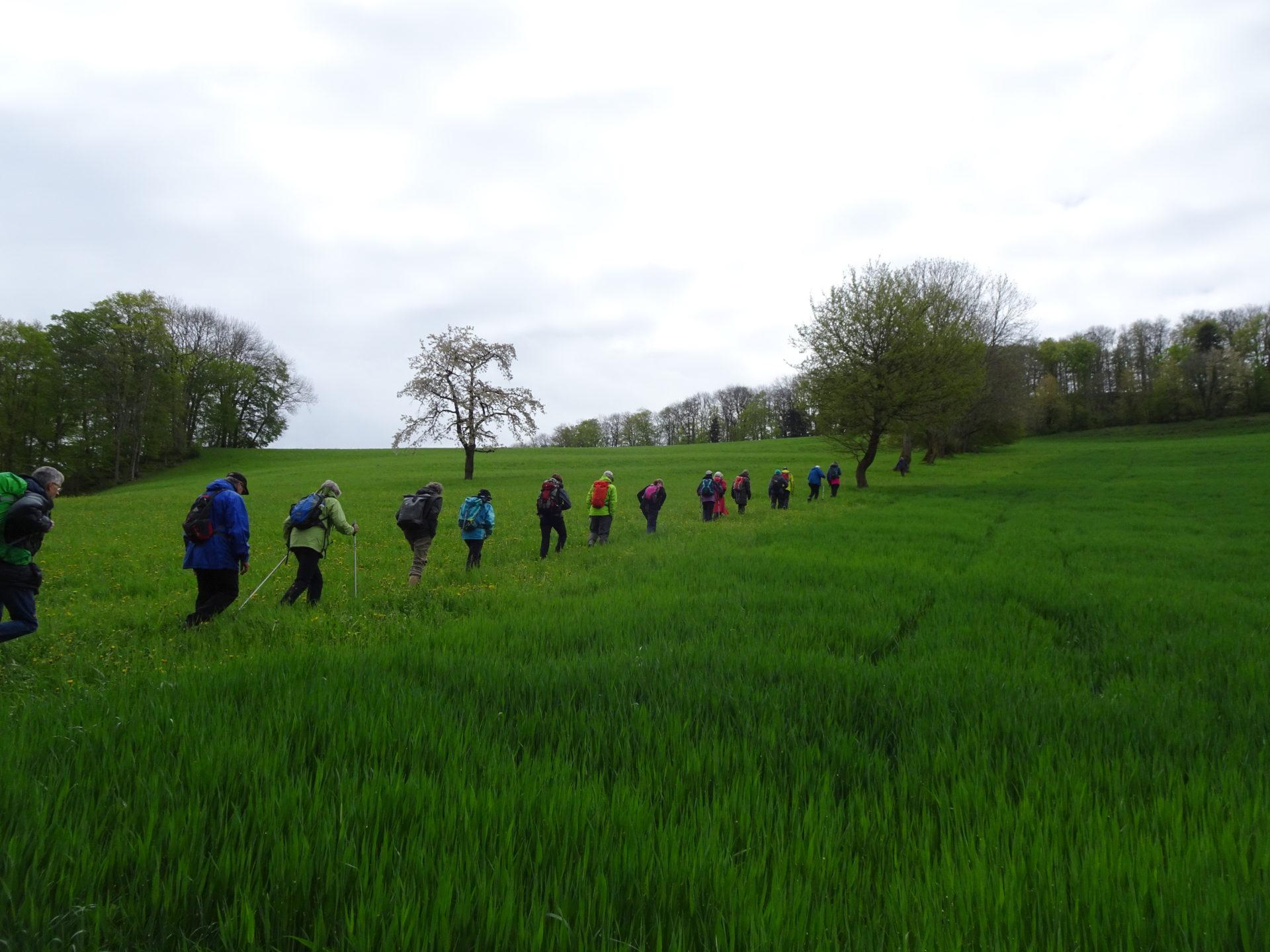Exkursion zur Feldscheune Rütiboden
